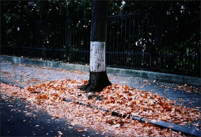 http://www.enricmontes.com/files/gimgs/th-16_IN-BERLIN-web19.jpg